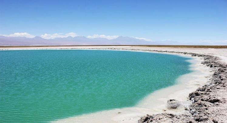 Conhecer Lagunas Cejar em San Pedro de Atacama
