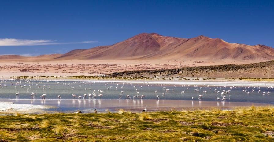 Passear por Salar de Tara em San Pedro de Atacama