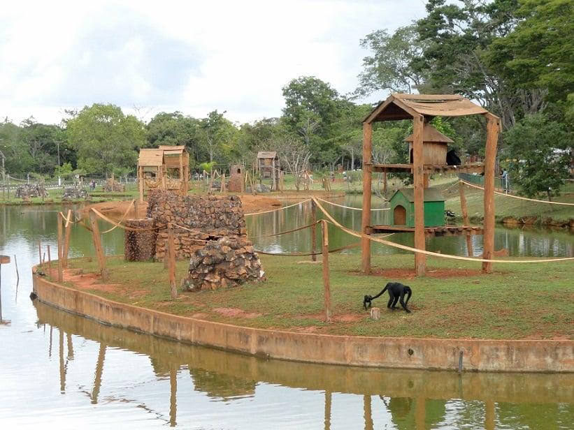 O que fazer em Brasília: Jardim Zoológico