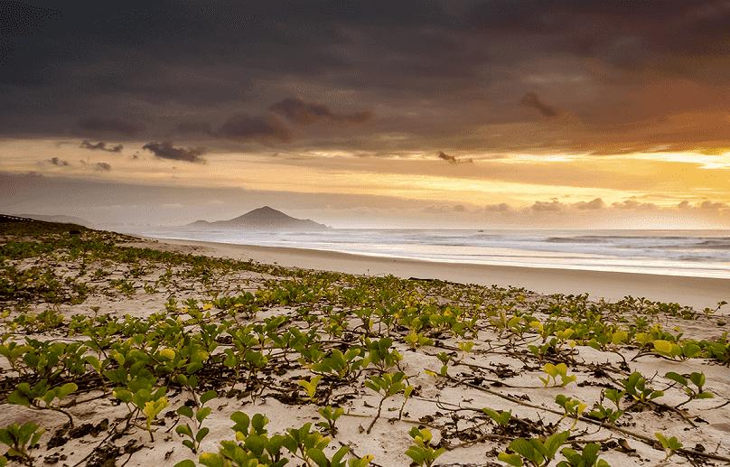 O que fazer em Navegantes: Praia Navegantes