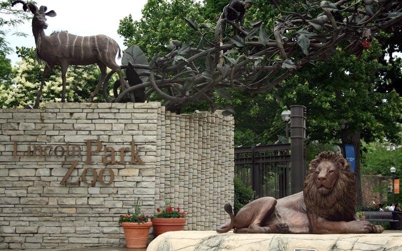 O que fazer em Chicago: Lincoln Park Zoo