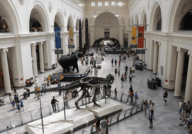 O que fazer em Chicago: Museus em Chicago