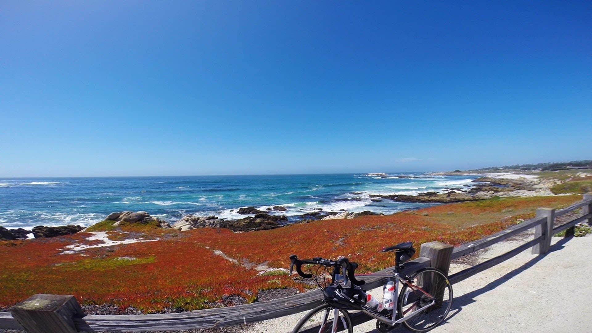 O Que Fazer em Monterey: Tour de Bicicleta