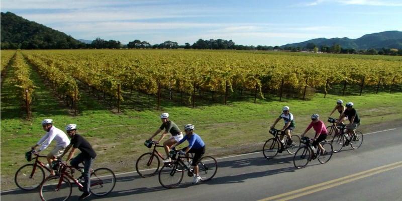 O Que Fazer em Napa Valley: Tour de Bicicleta