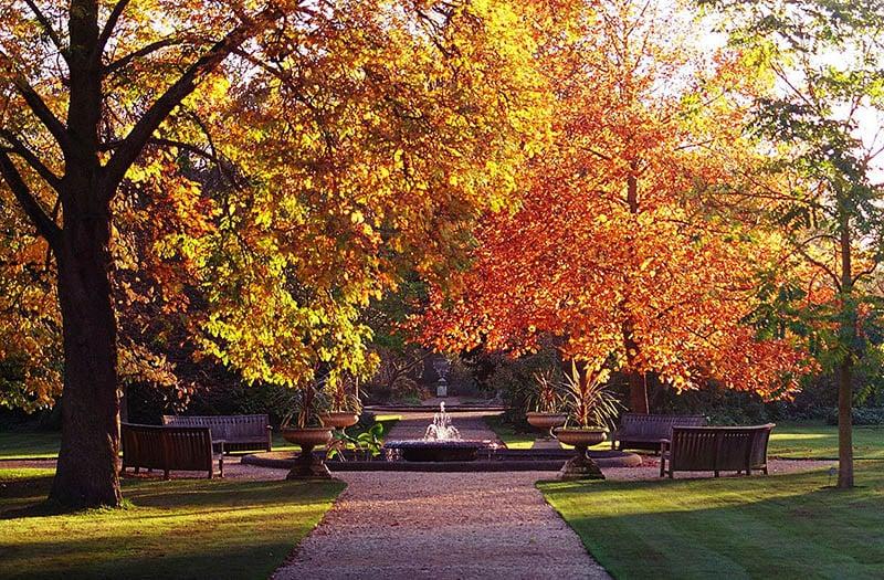 O que fazer em oxford: jardim botânico