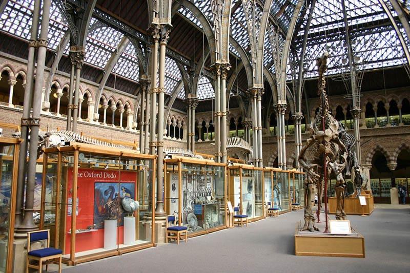 O que fazer em Oxford: Museu