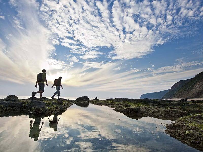 O que fazer em Apollo Bay: Great Ocean Walk