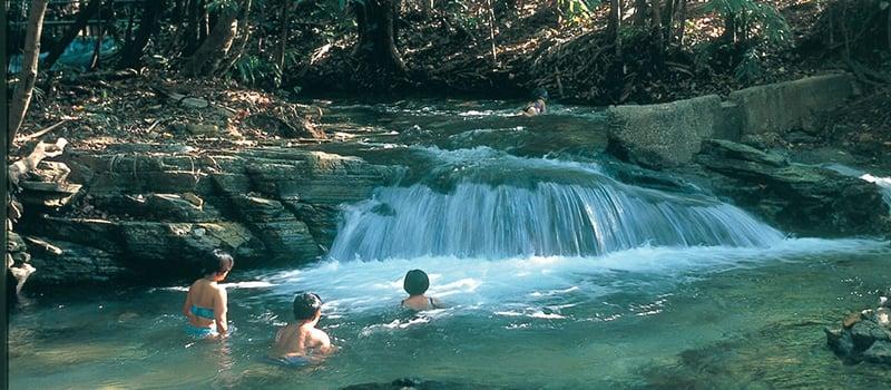O que fazer em Darwin: ParqueBerry Springs Nature