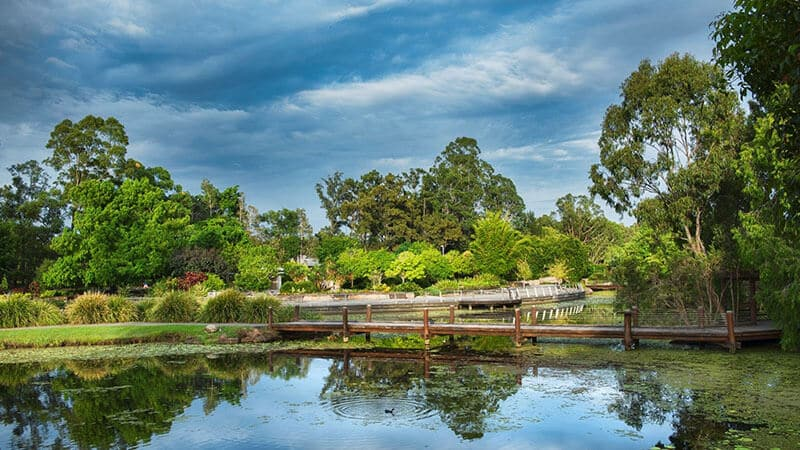 O que fazer em Gold Coast: Jardim Botânico