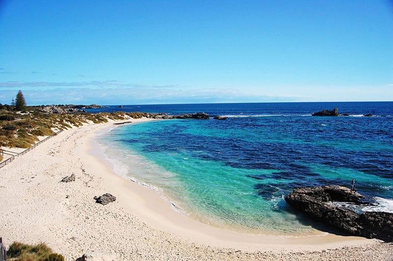 O que fazer em Perth: Ilha Rottnest